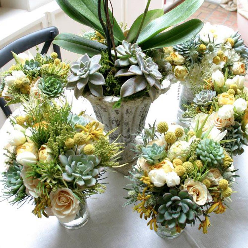 flowers_1000x1000